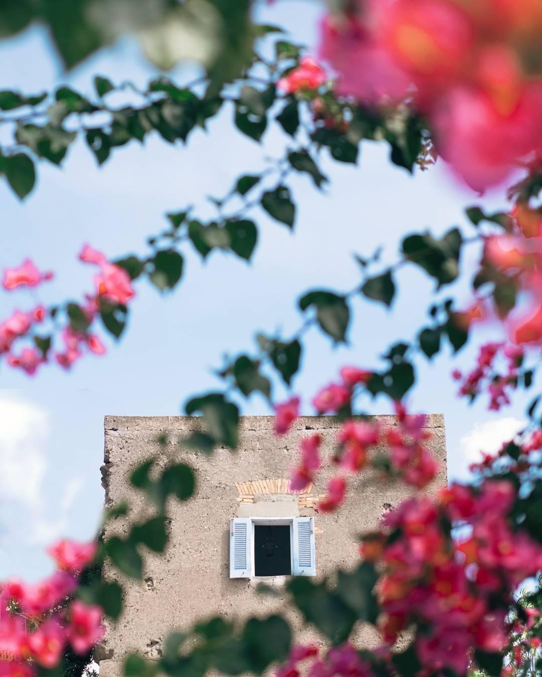 Light Tellers intervista di What Italy Is a Elena Orlando | Collater.al 9