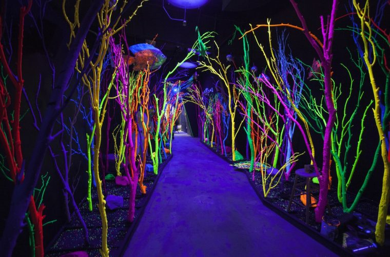 House of Eternal Return, the Meow Wolf'house which opens its doors to infinite realms