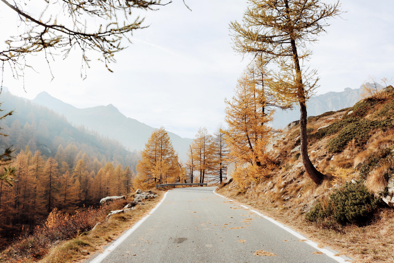 LandOutriders – Un weekend ai piedi del Parco Nazionale del Gran Paradiso con Alessio Rivolta e Francesca Garavaglia | Collater.al 15