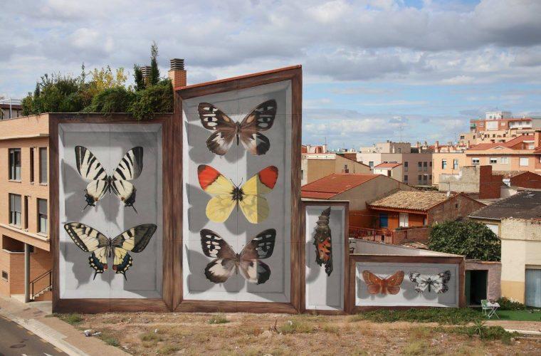 Le esposizioni di farfalle di Mantra