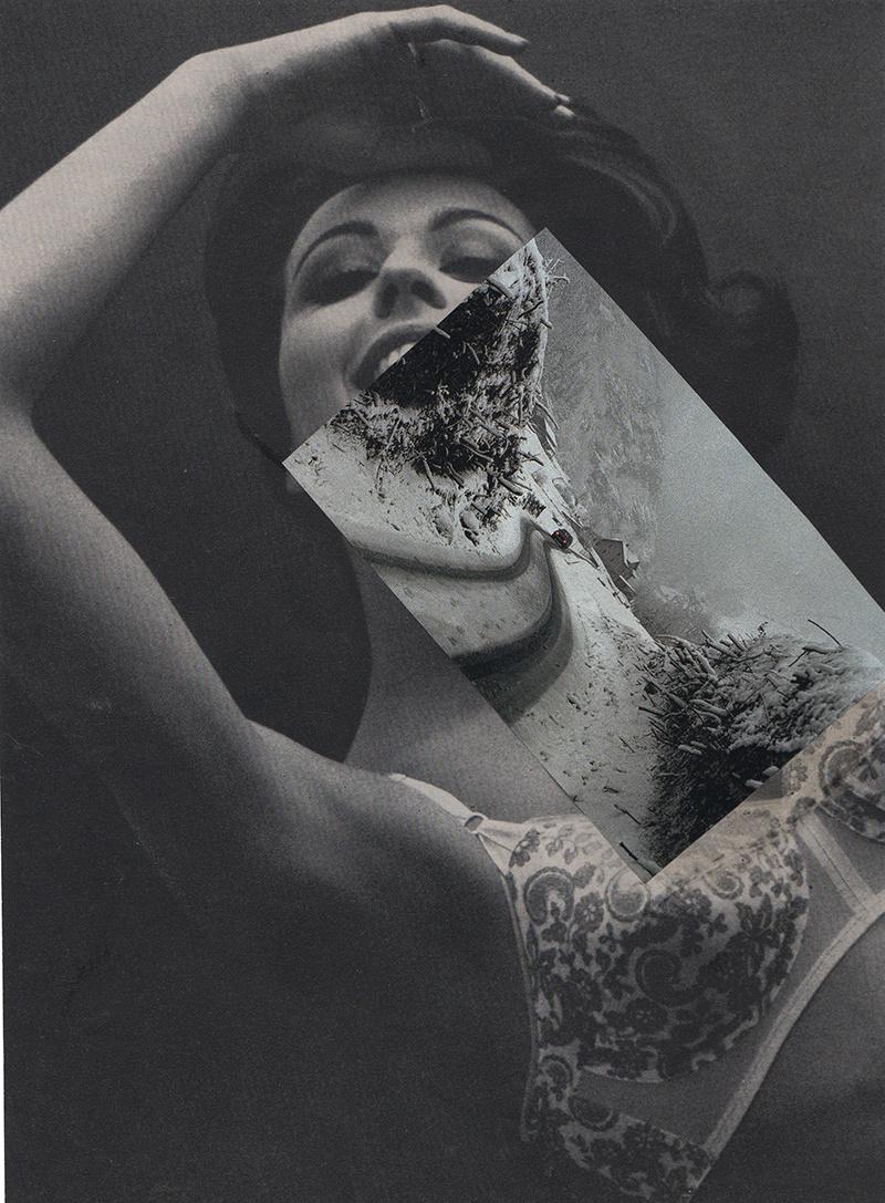 Amanda Durepos trasforma riviste d'epoca in fantasiosi collage | Collater.al 1