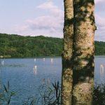 Fragile Chairs, l'installazione vista lago di Hidemi Nishida | Collater.al 5