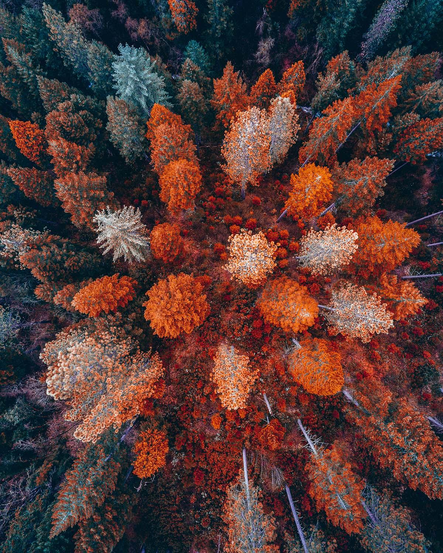 Gli incredibili paesaggi aerei del fotografo Niaz Uddin | Collater.al 8