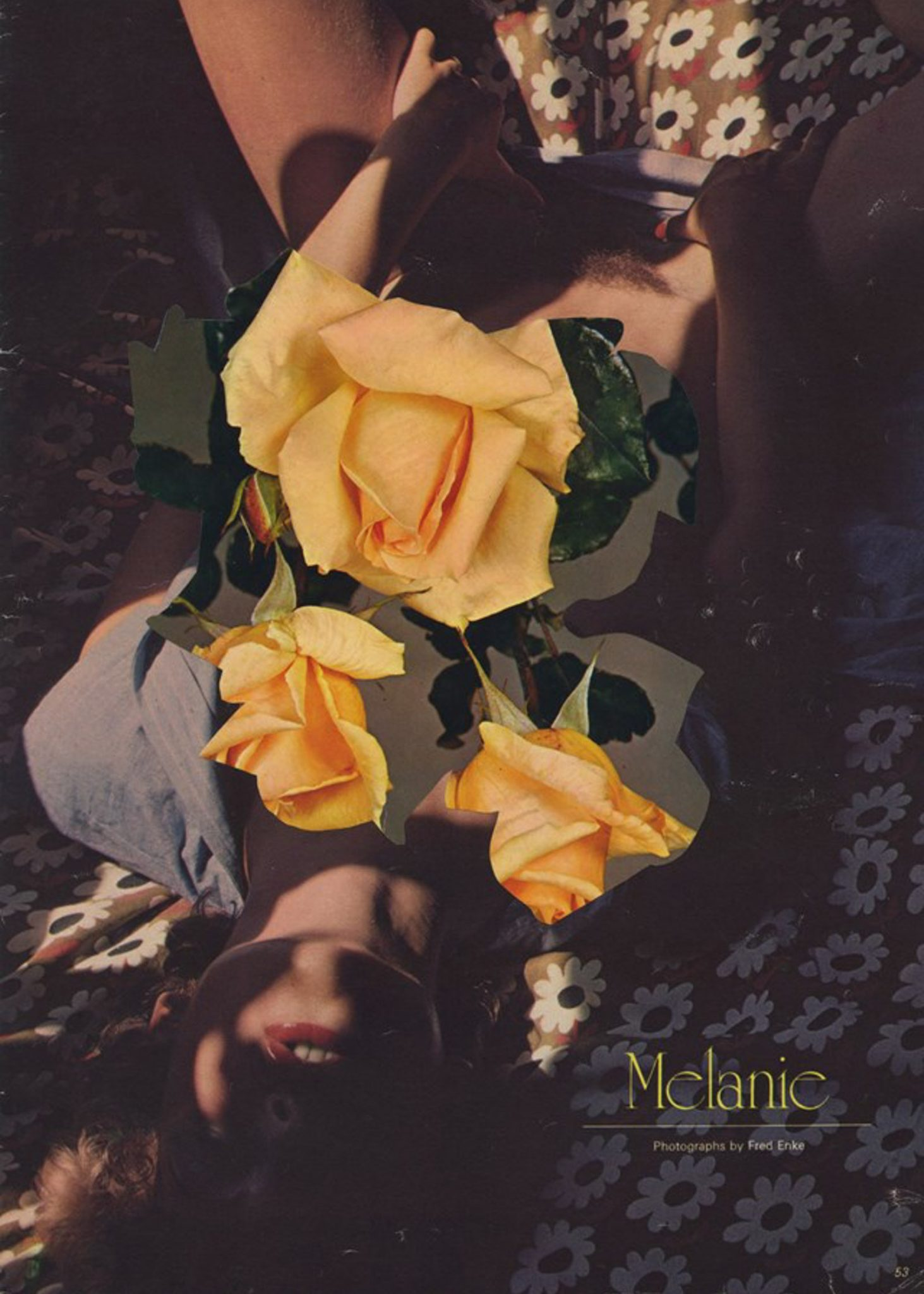 I celebri collage sulla figura femminile di Linder Sterling | Collater.al 13