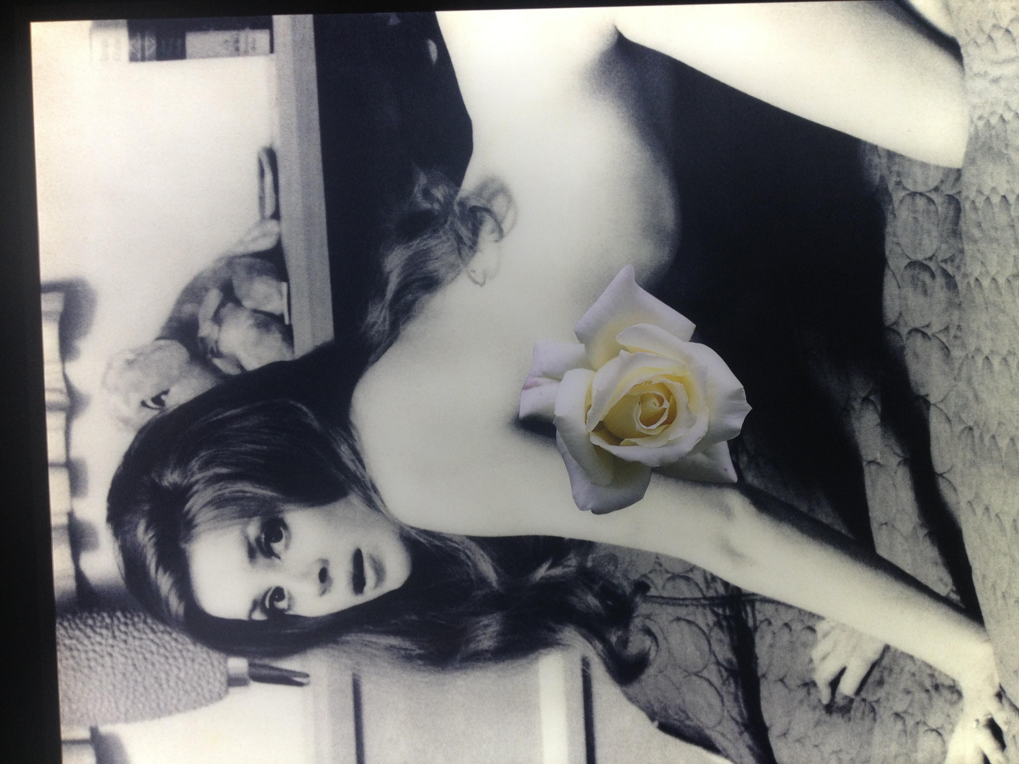 I celebri collage sulla figura femminile di Linder Sterling | Collater.al 5