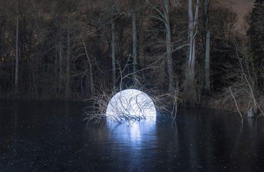 Marche Céleste, la foresta illuminata di Alexis Pichot