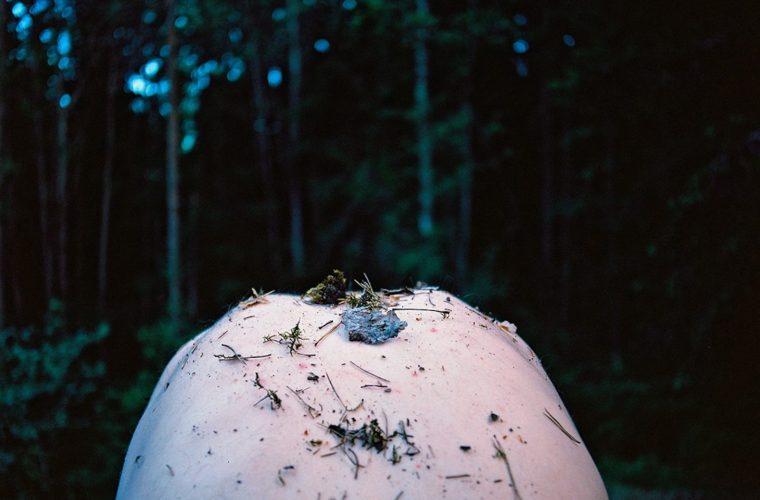 Simbiosi, il progetto fotografico di Noora-Maija Tokee
