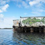 I murales selvatici di Dzia | Collater.al 3