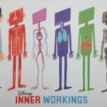 Inner Workings, l'eterna lotta fra cuore e cervello | Collater.al 3