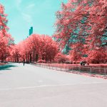 La New York ad infrarossi del fotografo Paolo Pettigiani | Collater.al 10