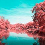 La New York ad infrarossi del fotografo Paolo Pettigiani | Collater.al 11
