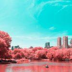 La New York ad infrarossi del fotografo Paolo Pettigiani | Collater.al 12