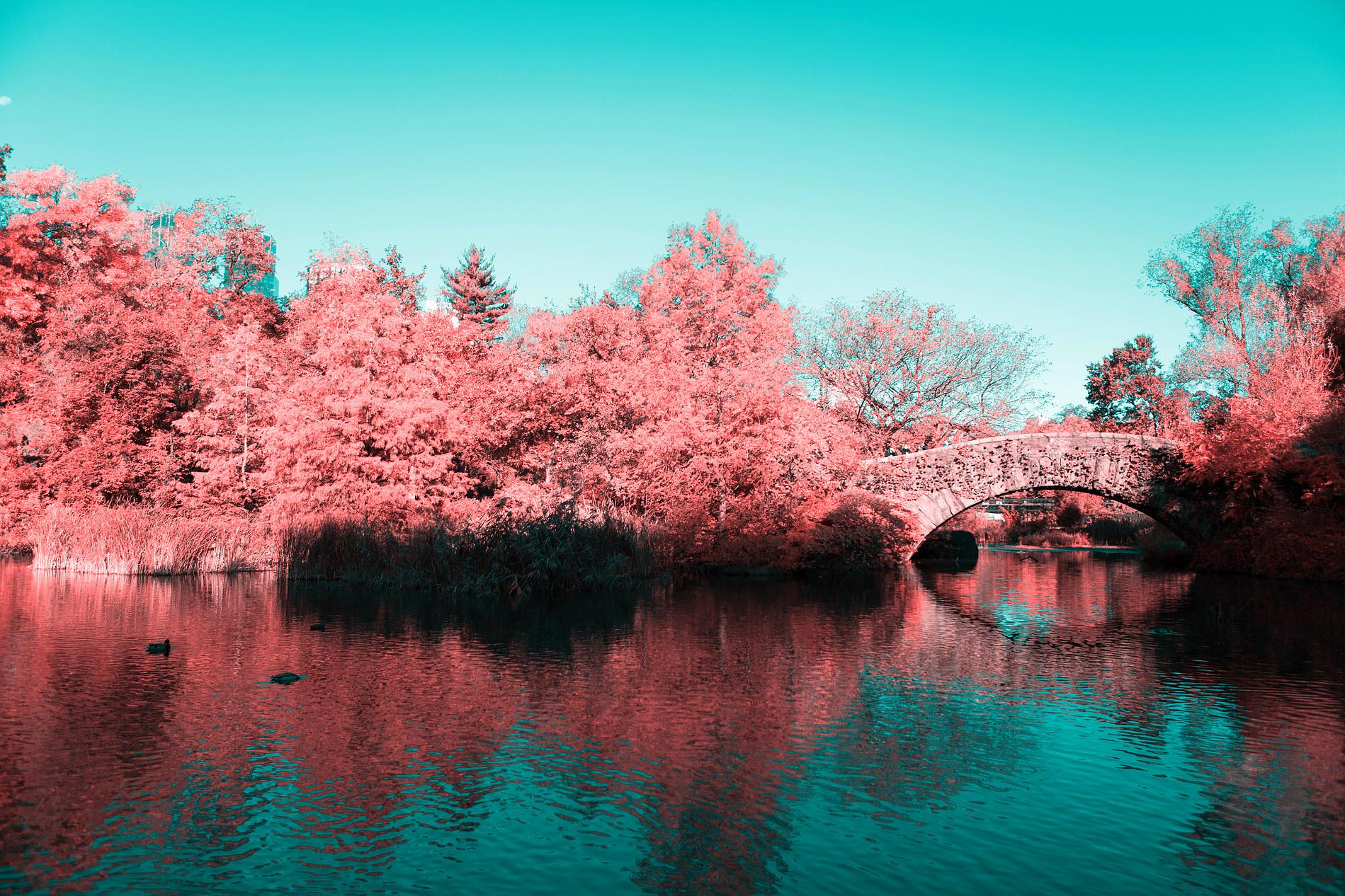 La New York ad infrarossi del fotografo Paolo Pettigiani | Collater.al 13