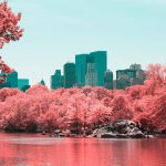 La New York ad infrarossi del fotografo Paolo Pettigiani | Collater.al 14