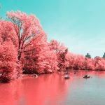 La New York ad infrarossi del fotografo Paolo Pettigiani | Collater.al 2