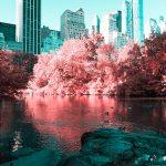 La New York ad infrarossi del fotografo Paolo Pettigiani | Collater.al 4