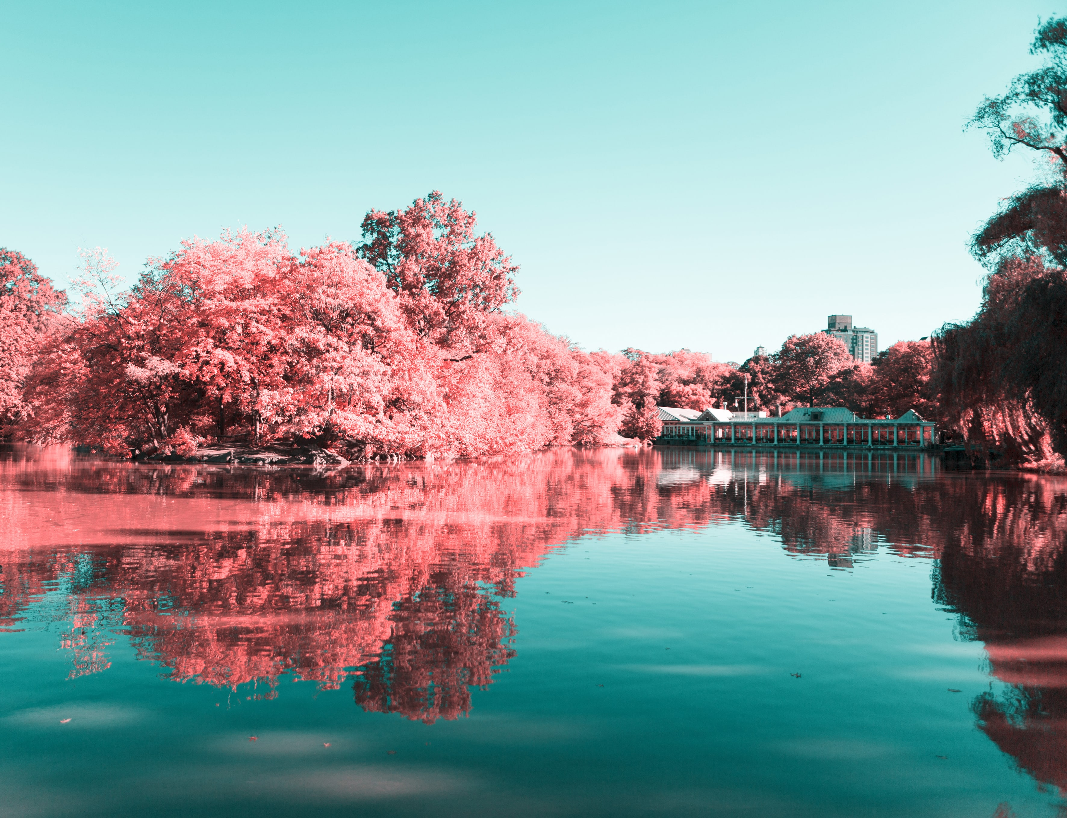 La New York ad infrarossi del fotografo Paolo Pettigiani | Collater.al 6