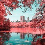 La New York ad infrarossi del fotografo Paolo Pettigiani | Collater.al 9