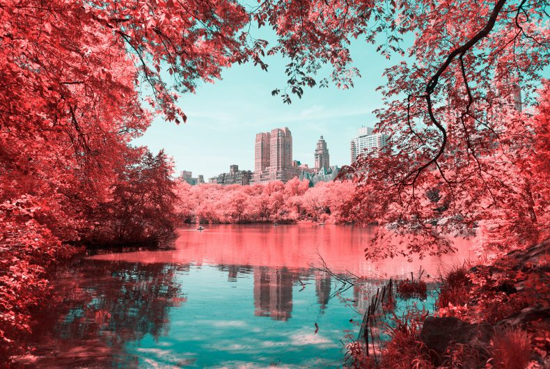 Infrared New York by photographer Paolo Pettigiani