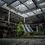 I luoghi abbandonati nella natura di Johnny Joo   Collater.al 5