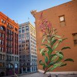 I murales naturalistici di Mona Caron | Collater.al 6