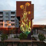 I murales naturalistici di Mona Caron | Collater.al 9