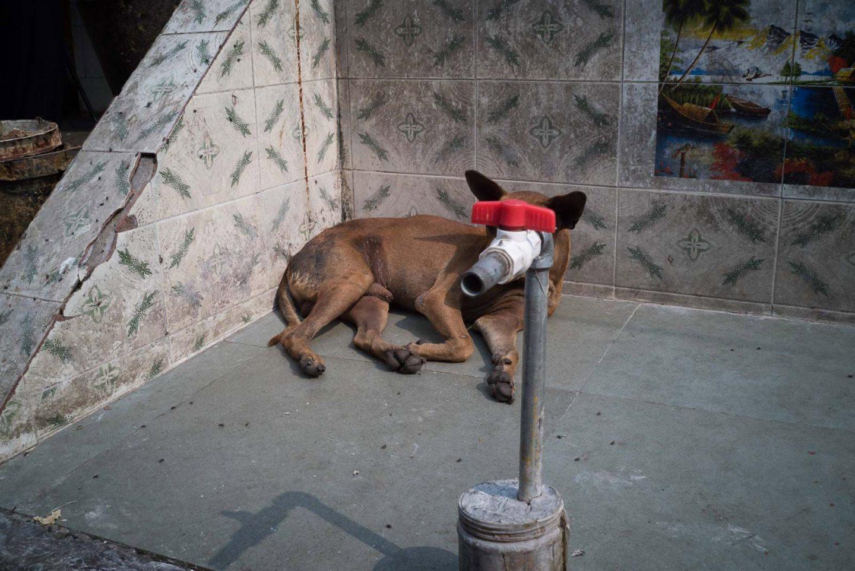 Hopscotch, l'immaginario infantile di Pau Buscato | Collater.al 1