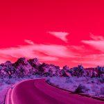 Infra Realism, Palm Springs si veste di rosa nelle foto di Kate Ballis | Collater.al 14