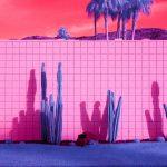 Infra Realism, Palm Springs si veste di rosa nelle foto di Kate Ballis | Collater.al 5