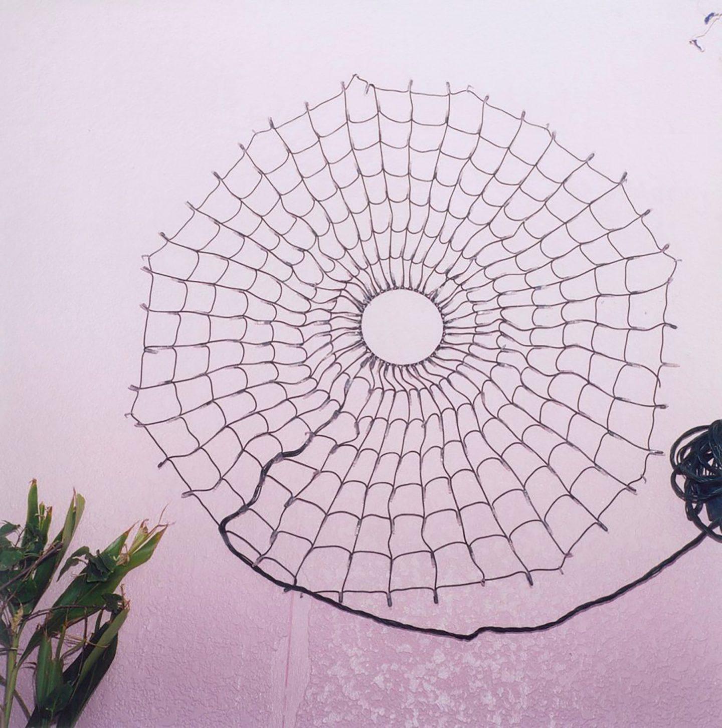 La poesia visiva di Rinko Kawauchi | Collater.al 9