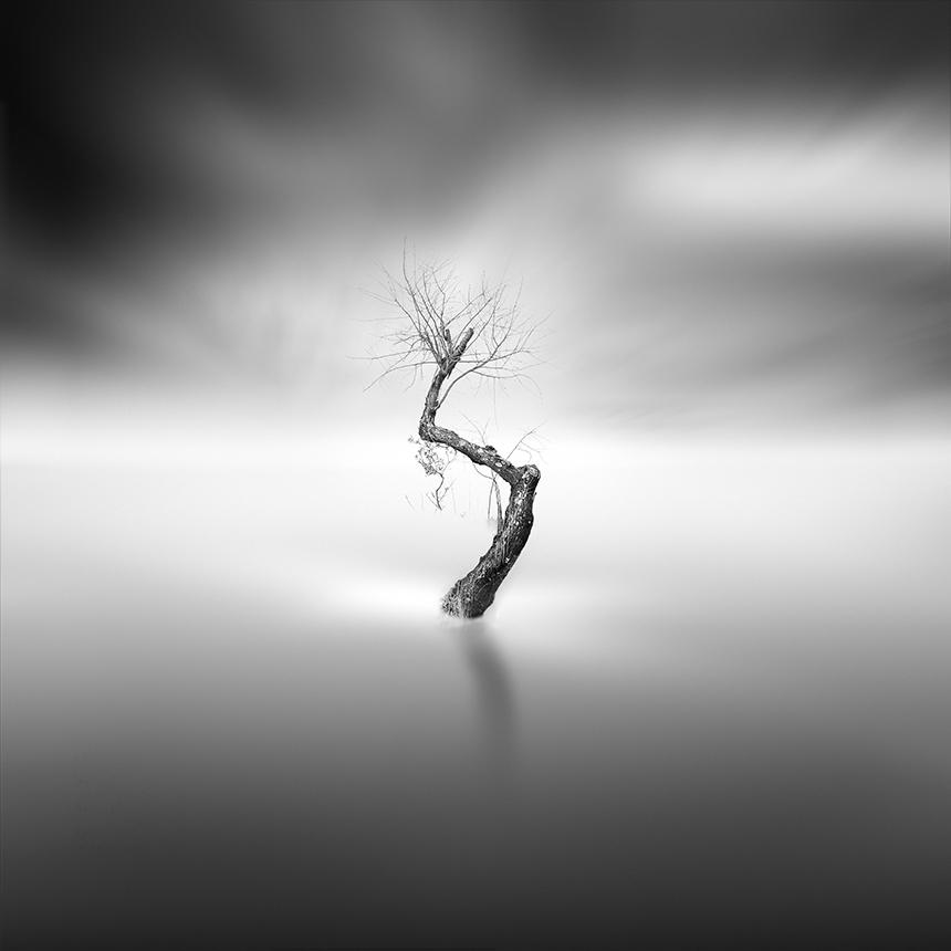 Le delicate foto in bianco e nero di vassilis tangoulis for Immagini minimal