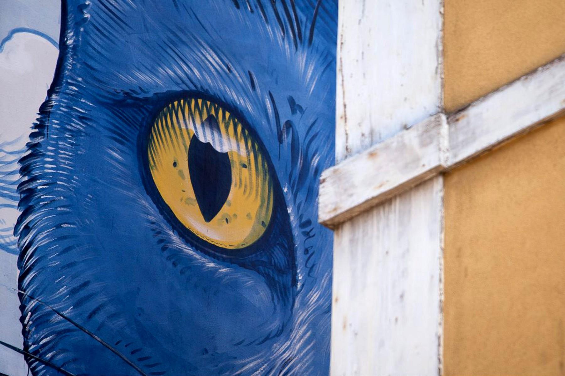 Perspentico, il grande gatto blu dello street artist Liqen | Collater.al 3
