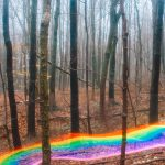 Rainbow Roads, le strade arcobaleno di Daniel Mercadante | Collater.al 7