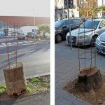 Vlady-Art-Albero-Incompiuto—Unfinished-Tree