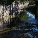 Outdoor Festival – Intervista con Wasted Rita | Collater.al