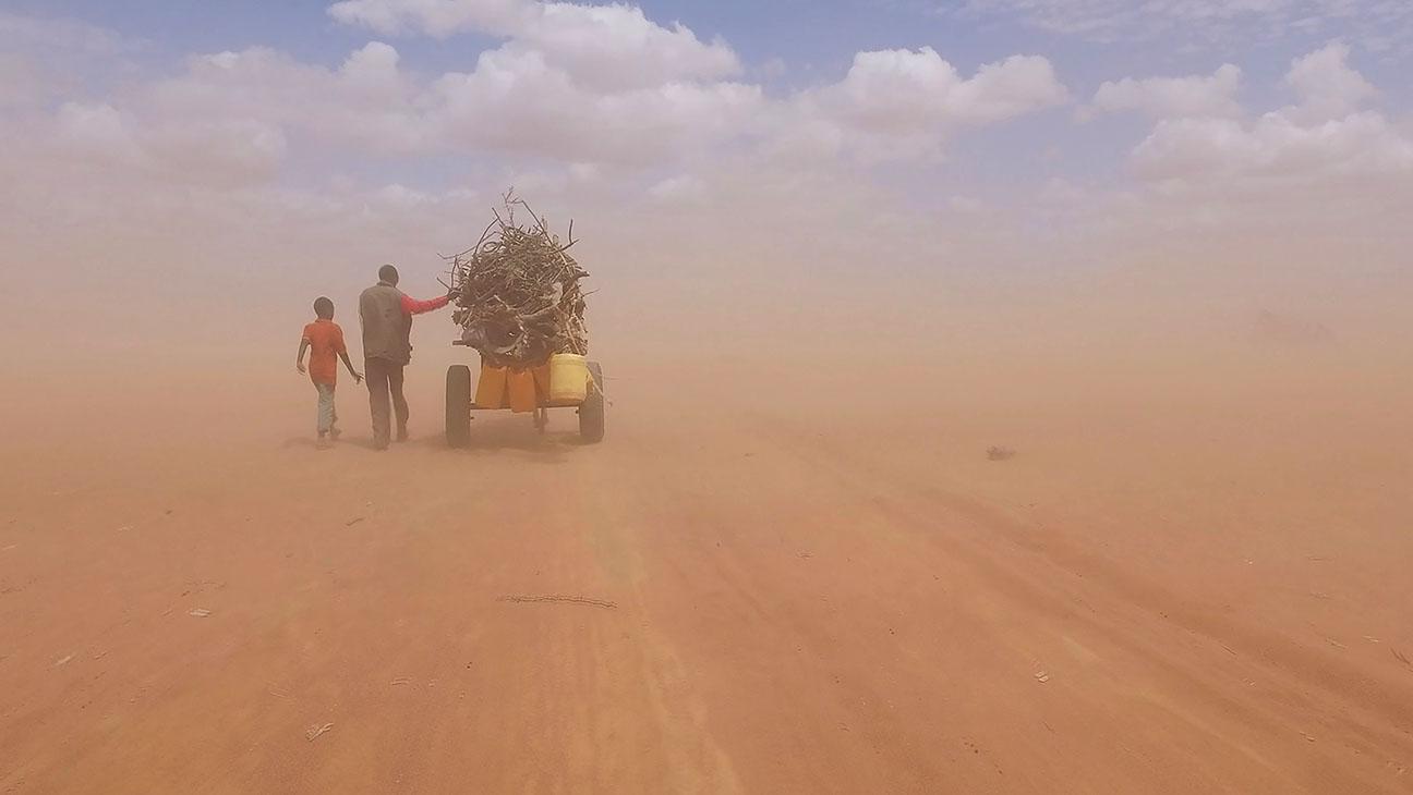Human flow e l'arte di Ai Weiwei al cinema   Collater.al 1