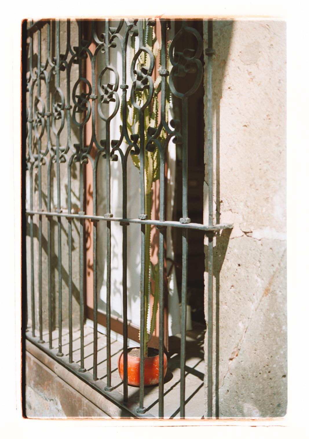 Oaxaca, Laura La Monaca | Collater.al 11