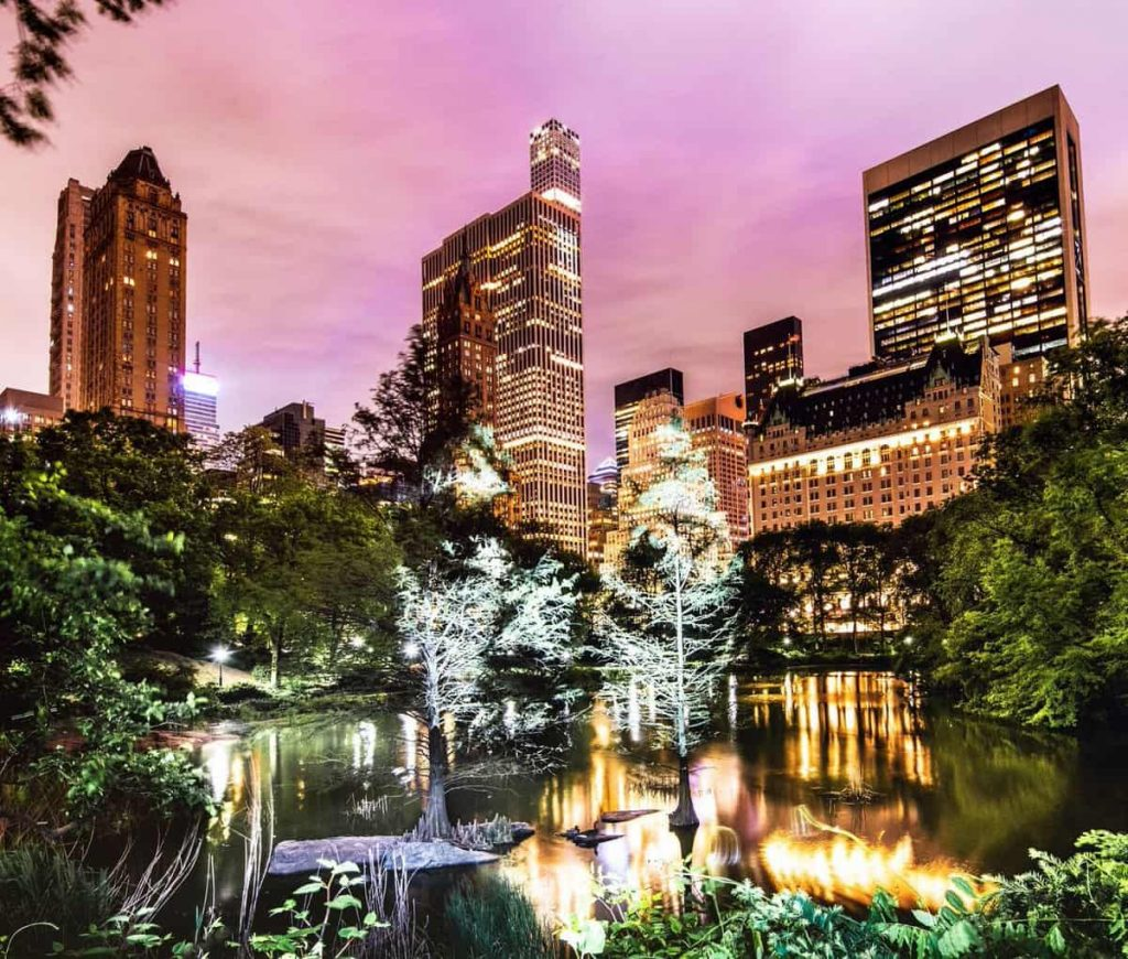 A World First in New York, Philippe Echaroux invade Central Park3 | Collater.al