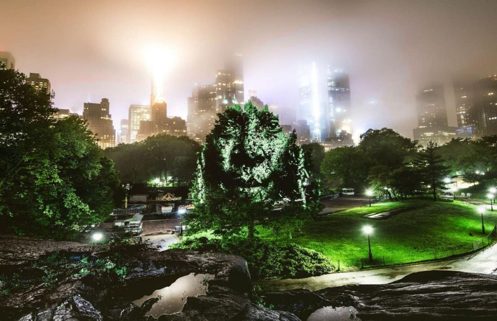 A World First in New York, Philippe Echaroux invade Central Park4 | Collater.al
