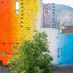 I murales pieni di colore di Xomatok | Collater.al 7