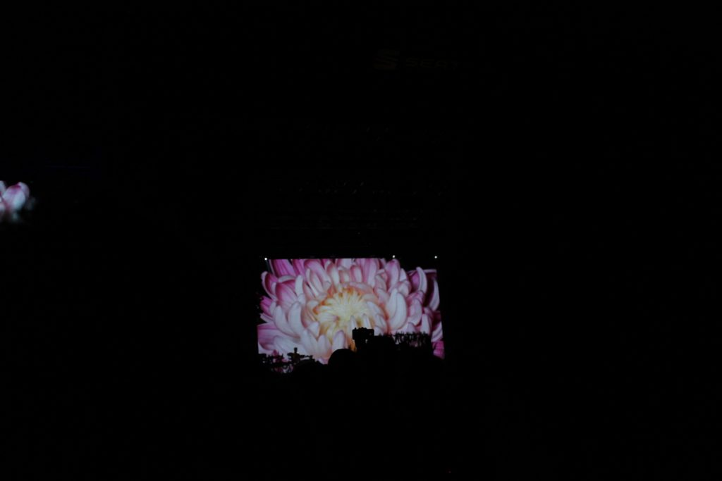 Primavera Sound 2018 - A Love Story