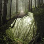 Le fotomanipolazioni surreali di Justin Peters | Collater.al