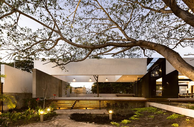La Casa Del Árbol, a house that pays tribute to the trees