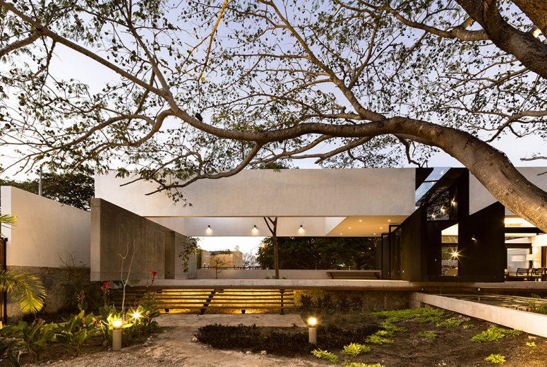 La Casa Del Árbol, una casa che rende omaggio agli alberi
