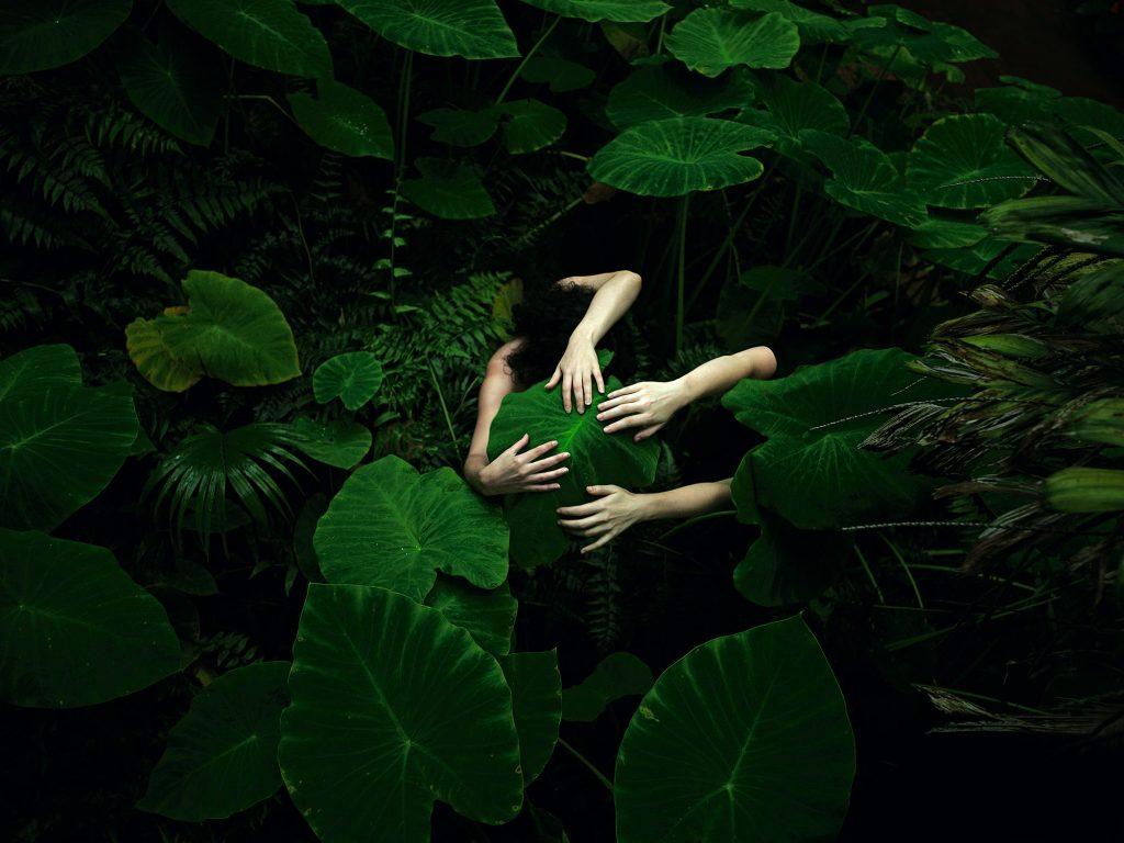 La bellezza della natura nelle foto di Tamara Dean | Collater.al 1