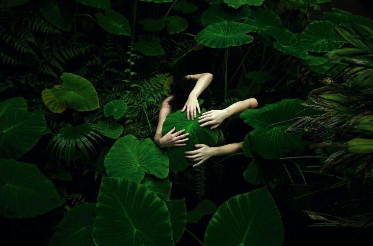 La bellezza della natura nelle foto di Tamara Dean