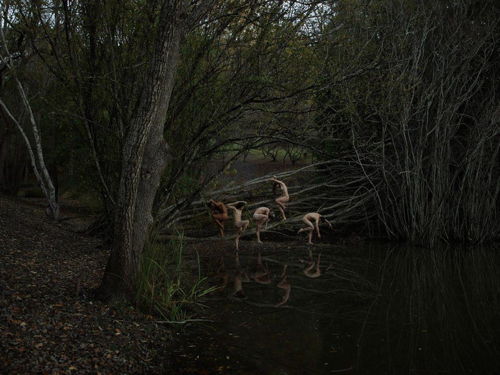 La bellezza della natura nelle foto di Tamara Dean | Collater.al 8