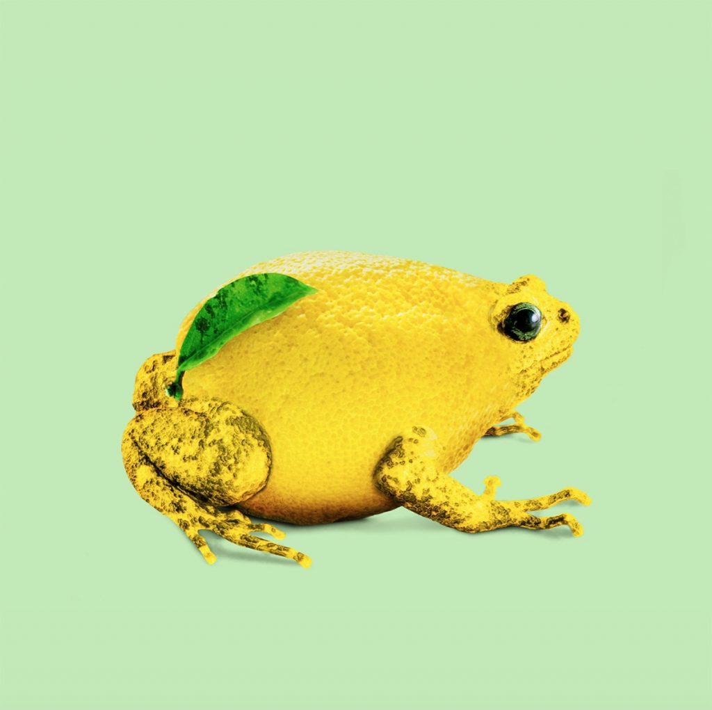 Le immagini di Jonas Loose divertenti e surreali | Collater.al