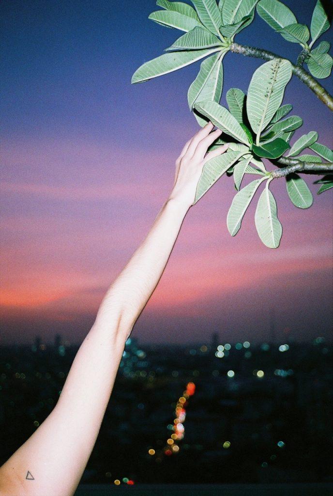 Nick Prideaux cattura la bellezza delle piccole cose | Collater.al 17