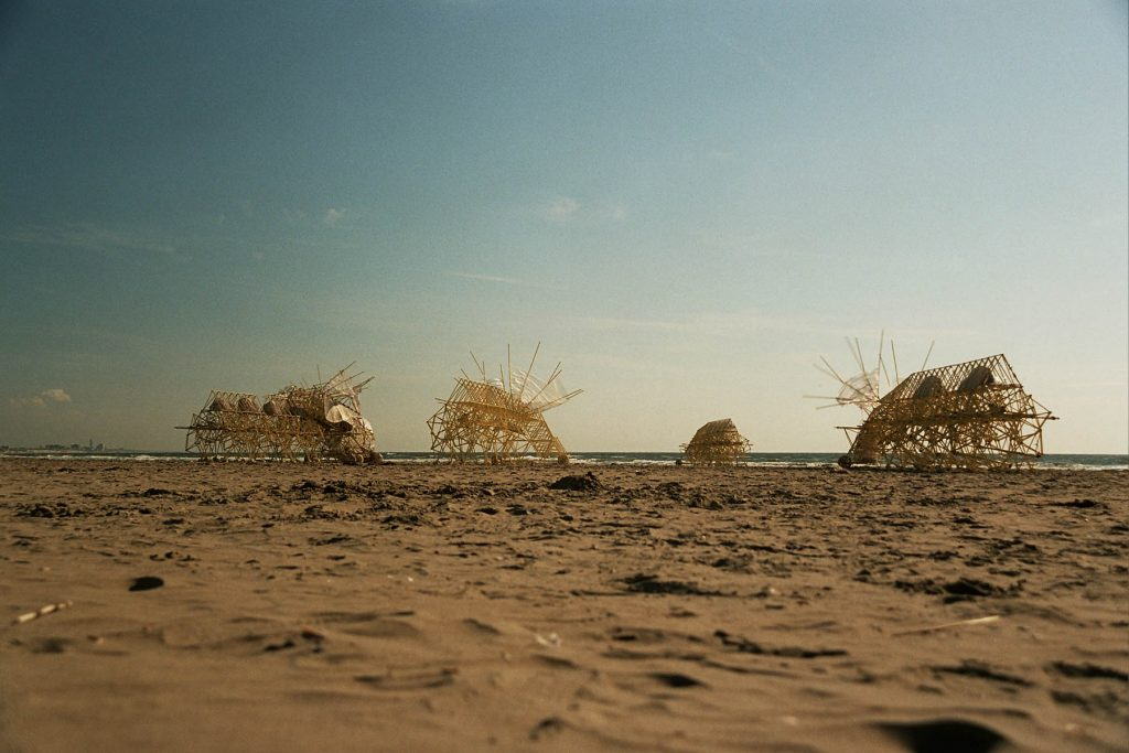 Strandbeests | Collater.al